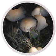 Shrooms 1 Round Beach Towel