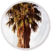 Shrouded In The Past 1 Round Beach Towel