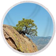 Shrub And Rock At Canon City Round Beach Towel