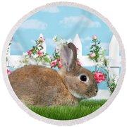 Shy Brown Dwarf Bunny Portrait Round Beach Towel