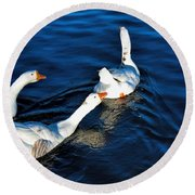 Shy But Lovely Round Beach Towel