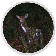 Shy Fallow Deer 4 Round Beach Towel