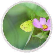 Shy Little Yellow Butterfly Round Beach Towel