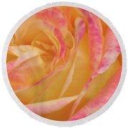 Shy Yellow Rose Round Beach Towel