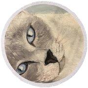 Siamese Cat Round Beach Towel