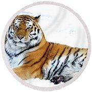 Siberian Tiger Amur Tiger Round Beach Towel