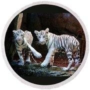 Siberian Tiger Cubs Round Beach Towel