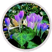 Signs Of Spring I Round Beach Towel