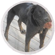 Silly Dog Round Beach Towel