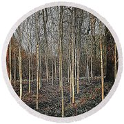 Silver Birch Winter Garden Round Beach Towel