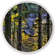 Silver Falls State Park Oregon 2 Round Beach Towel