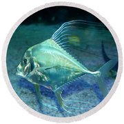Silver Fish Round Beach Towel by Svetlana Sewell