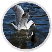 Silver Gull And Australian Coot Round Beach Towel