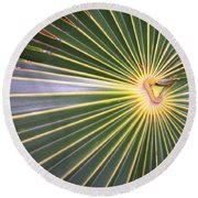 Silver Palm  Round Beach Towel