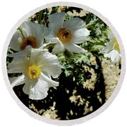 Silver Terrace Virginia City Nevada Flowers Round Beach Towel