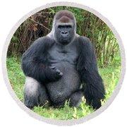 Silverback Gorilla 2 Round Beach Towel