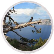 Silvery Tree Over Crater Lake Round Beach Towel