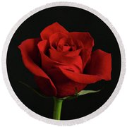 Simply Red Rose Round Beach Towel