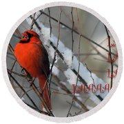 Singing Cardinal Christmas Card Round Beach Towel