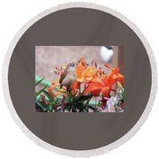 Singing Wren In The Lilies Round Beach Towel
