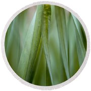 Single Blade Of Onion Grass Leaning - Color Version Round Beach Towel