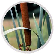 Single Cattail Round Beach Towel