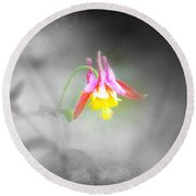 Single Columbine Round Beach Towel