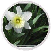 Single Daffodil Round Beach Towel