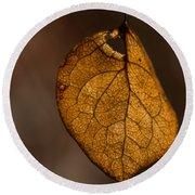 Single Fall Leaf Round Beach Towel