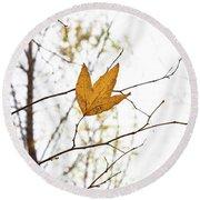 Single Leaf In Fall Round Beach Towel