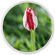 Single Lovely Tulip Round Beach Towel