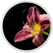 Single Pink Day Lily Round Beach Towel