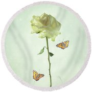Single Stem White Rose Round Beach Towel