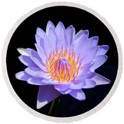 Single Water Lily Round Beach Towel