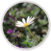 Single White Daisy On Purple Round Beach Towel