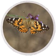 Sipping Nectar Round Beach Towel