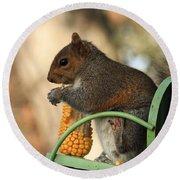 Sitting Squirrel Round Beach Towel