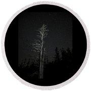 Skeletal Tree Starscape Round Beach Towel
