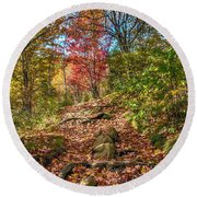 Skeleton Of Graveyard Fields Round Beach Towel