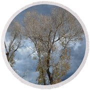 Skeleton Trees Round Beach Towel