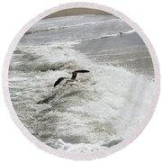 Skimmer And Waves Round Beach Towel