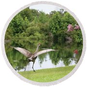 Skipping Sandhill Crane By Pond Round Beach Towel