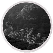 Skn 6707 Tree Parade. B/w Round Beach Towel
