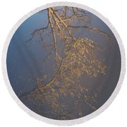 Sky Above Me, Water Below Me, Life Surrounds Me. Round Beach Towel by Viviana Nadowski