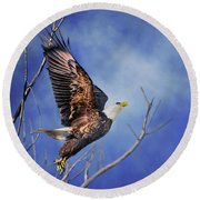 Skyward - Bald Eagle Round Beach Towel