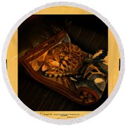 Sleeping Cat Digital Painting Round Beach Towel
