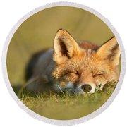 Sleeping Fox Kit Round Beach Towel
