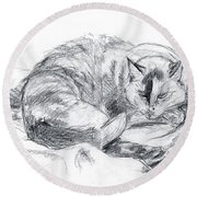 Sleeping Jago Round Beach Towel