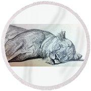 Slepping Lion Round Beach Towel