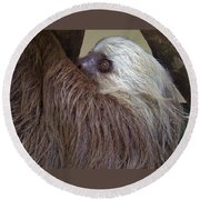 Sloth Round Beach Towel